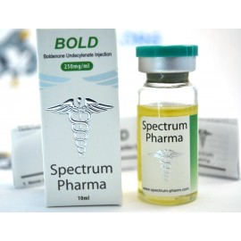 Bold Spectrum (10ml)