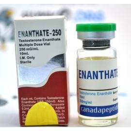 Delatestryl (Test E) Canada Peptides (10 ml)