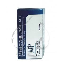 Trenbolone Enanthate Magnus (10 ml)
